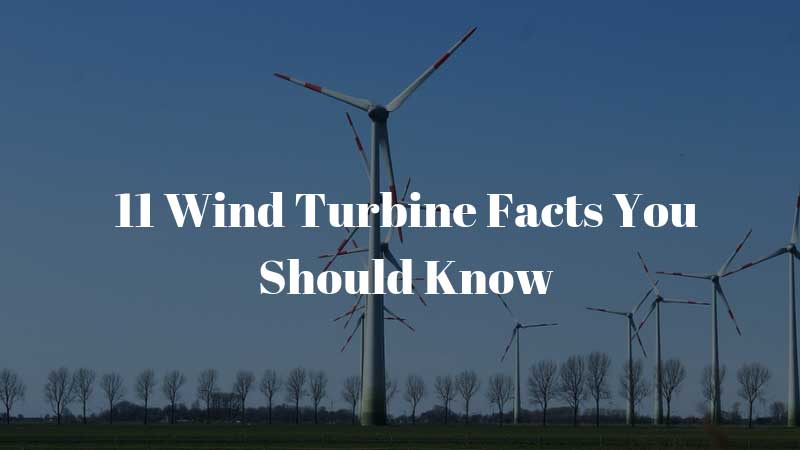 Wind-Turbine-Facts-You-Should-Know